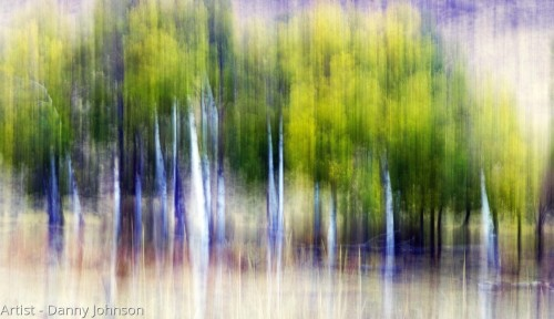 Impressions by Danny's Photography