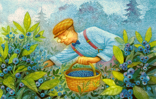 Blueberry Picker
