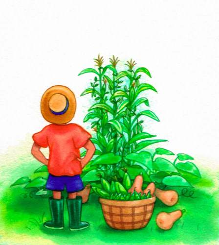 Boy grows Vegetables