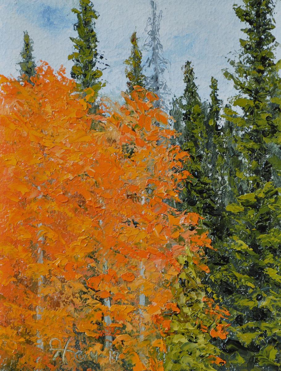 Orange Aspen (large view)