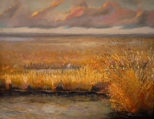 Quiet January on the Marsh