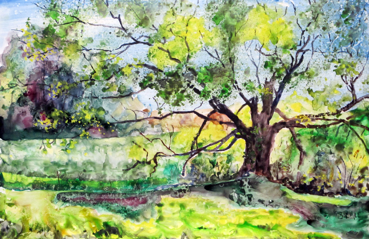 The Seed Tree (large view)