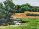 Puddles in the Field Road (thumbnail)