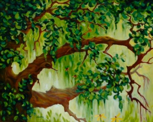 Santa Ynez Oak