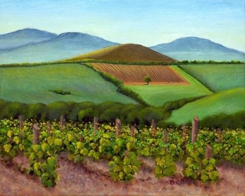 Brunello Vineyards, Montalcino