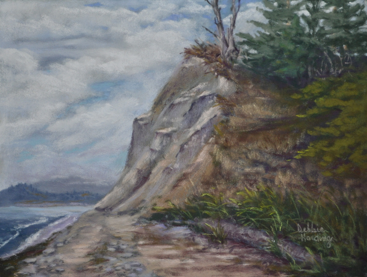 Whidbey Island Bluff (large view)