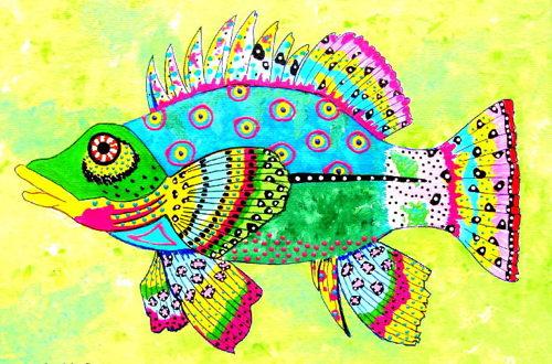 Hawkfish Two