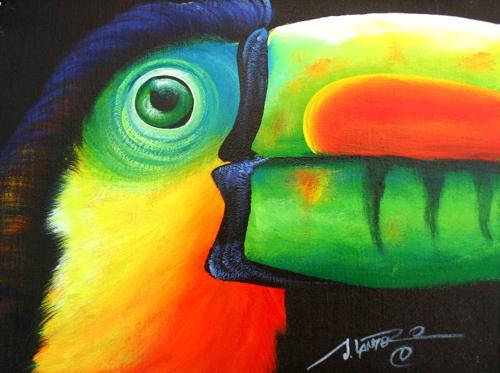 Toucan Face