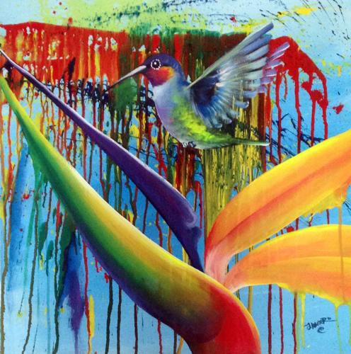 Hummingbird Splash