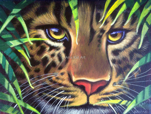 Hidden Jag