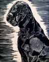 Coonhound (thumbnail)