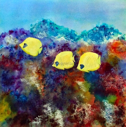 Three Yellow Fish in Coral Reef