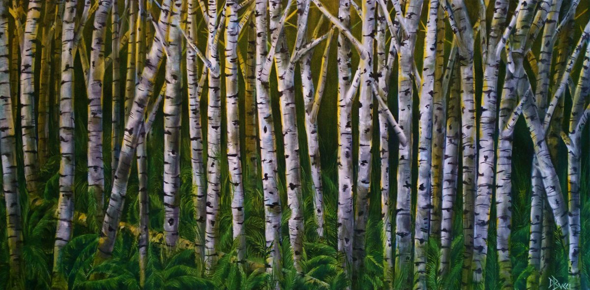 Birch Trees - Private Collection (large view)