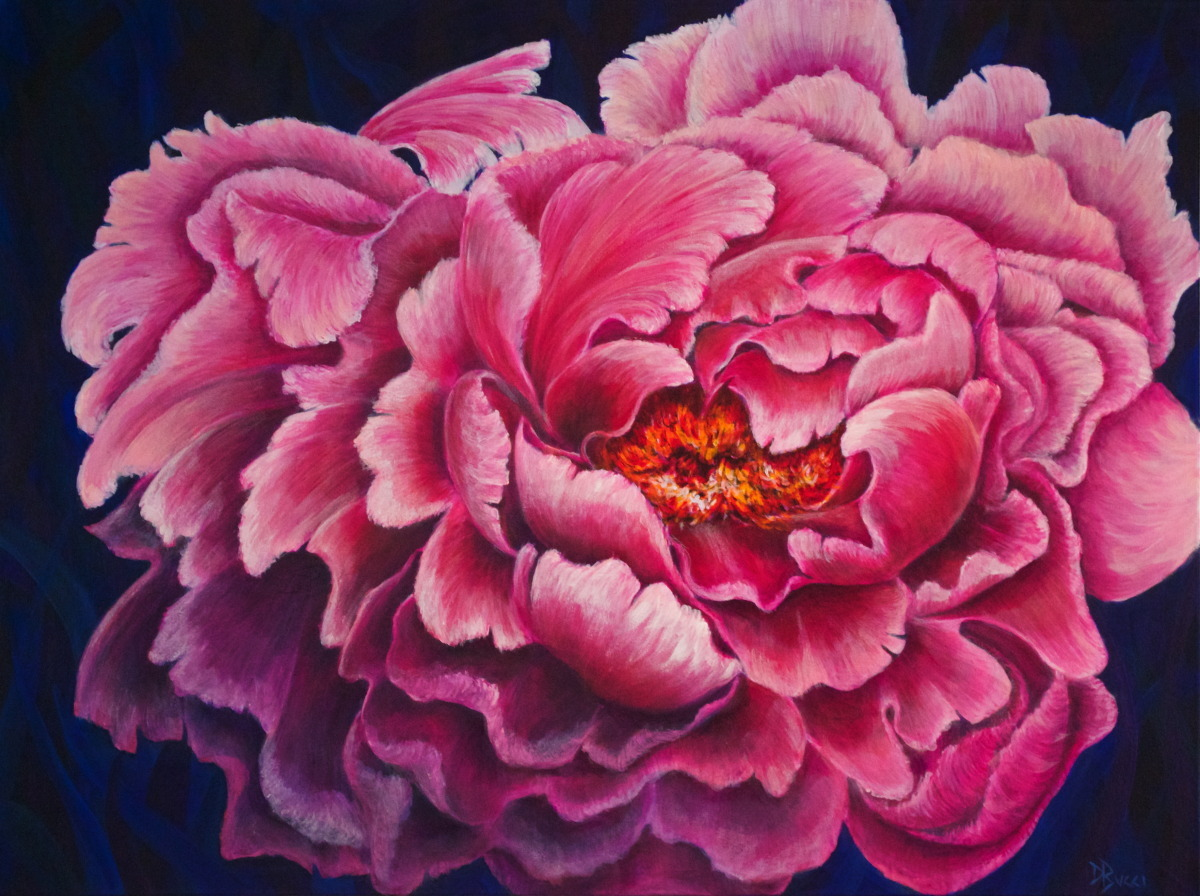 Blooming Peony (large view)