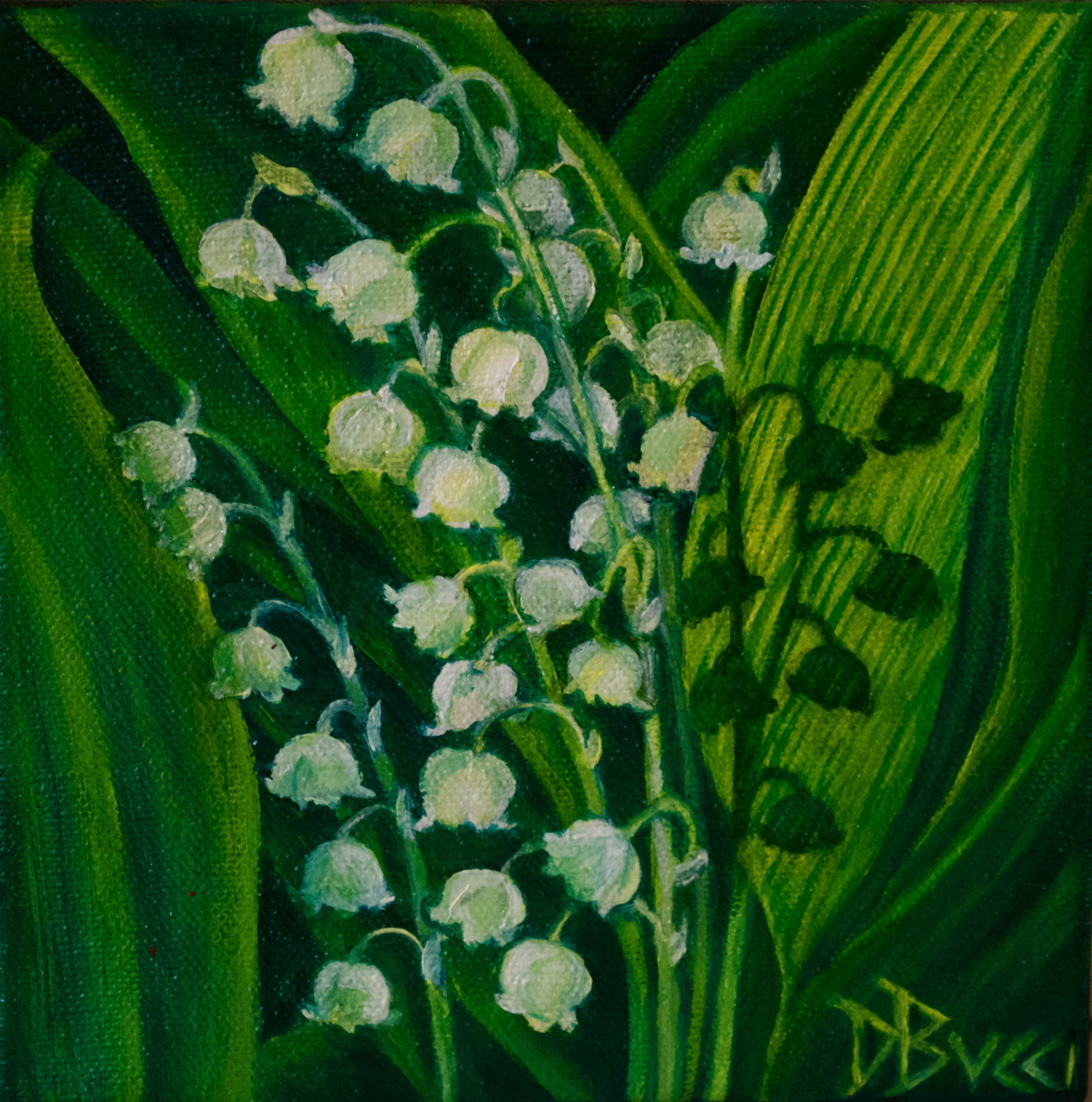 "Debra Bucci Fine Art presents Lily of the Valley 2 which is a Pocketbook or miniature oil painting that measures 6"" square. This is white, yellow and green painting with shadows coming through the leaves. It is a feel good painting.