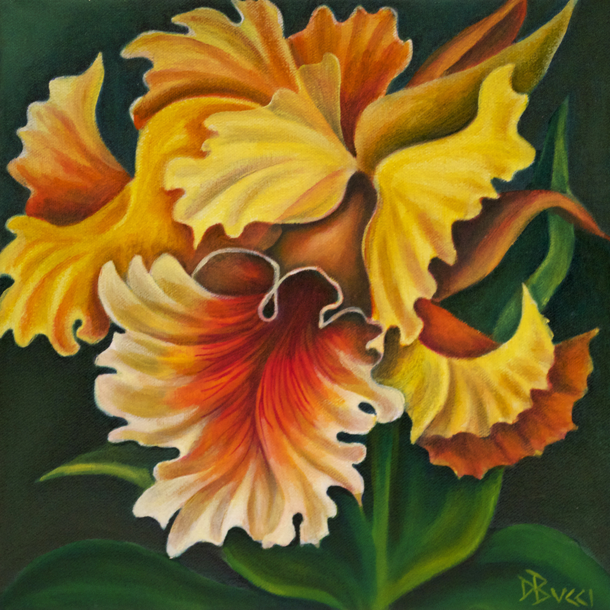 Yellow Cattleya Orchid (large view)