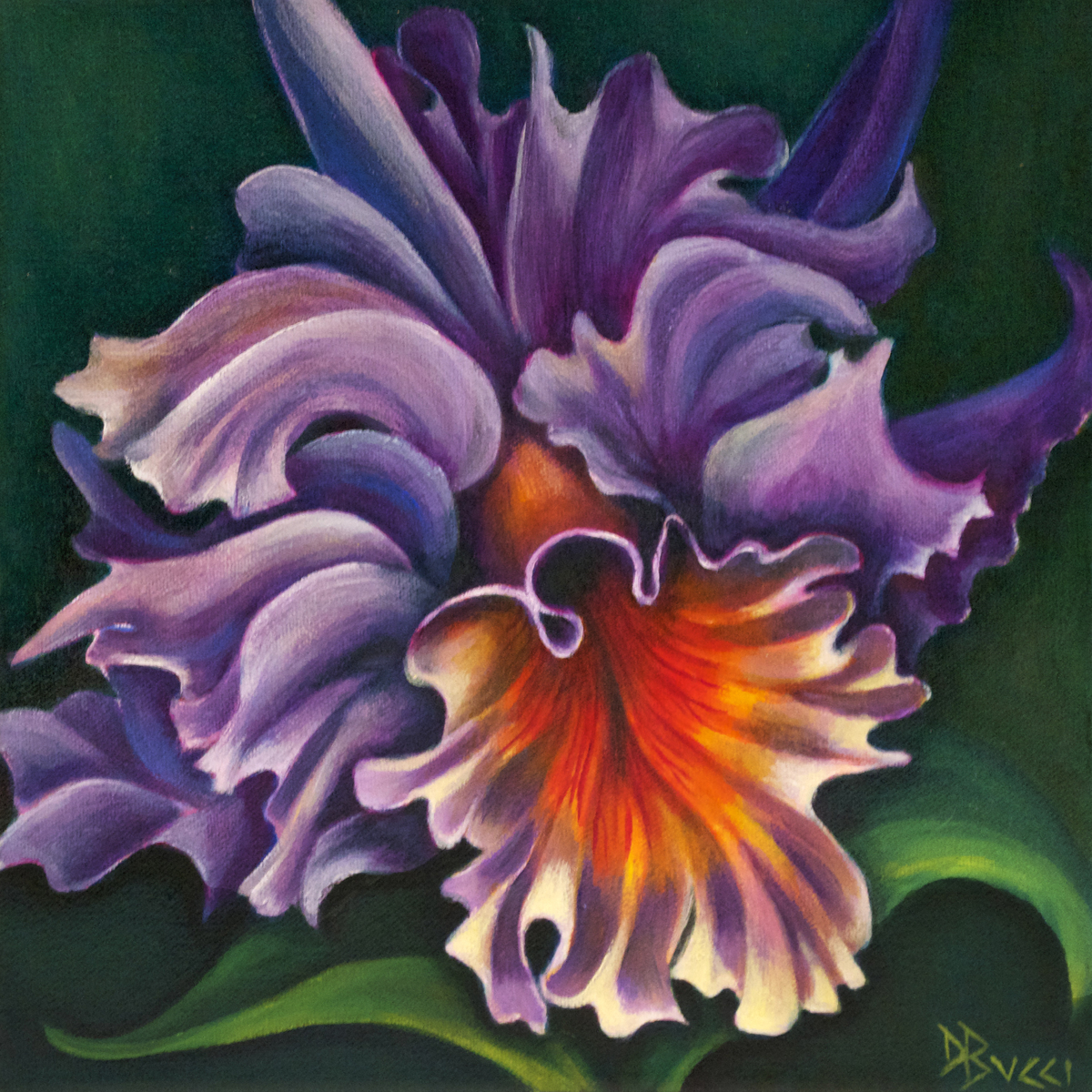 Purple Blue Cattleya Orchid (large view)