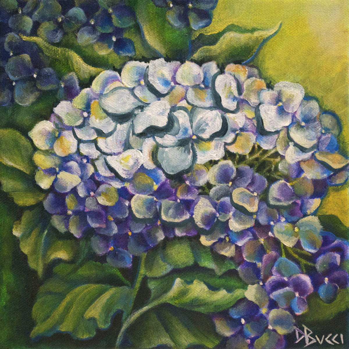 Blooming Hydrangea (large view)