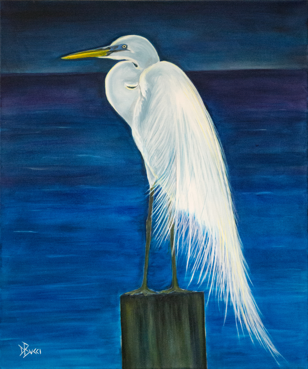 Resting Egret (large view)