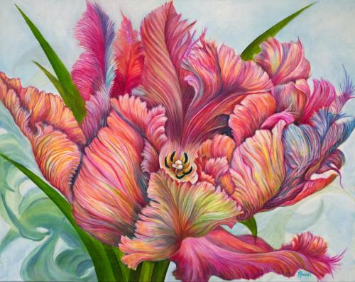 Tulip L'Orange
