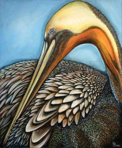 Resting Brown Pelican