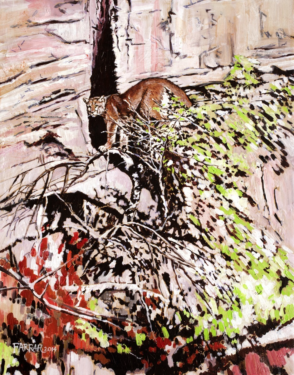 Impression Cougar (large view)