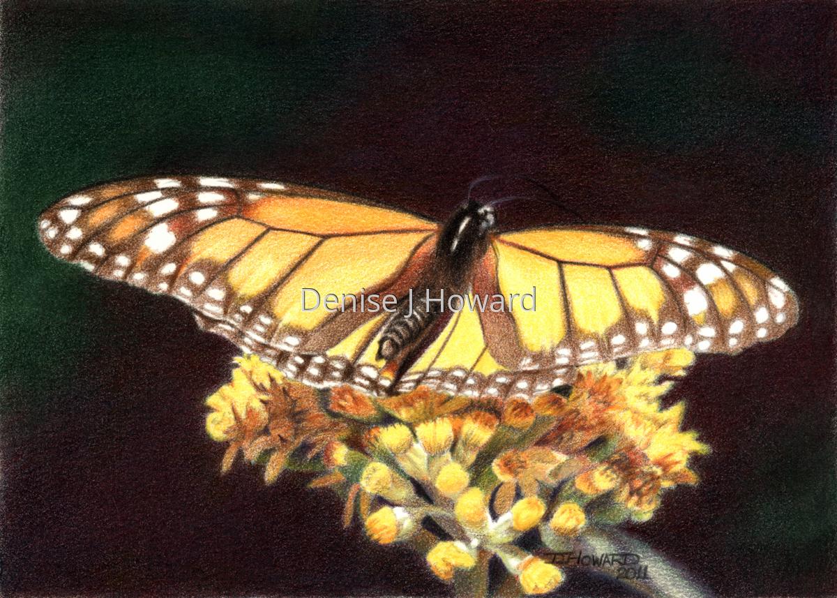 Monarch #3 (large view)