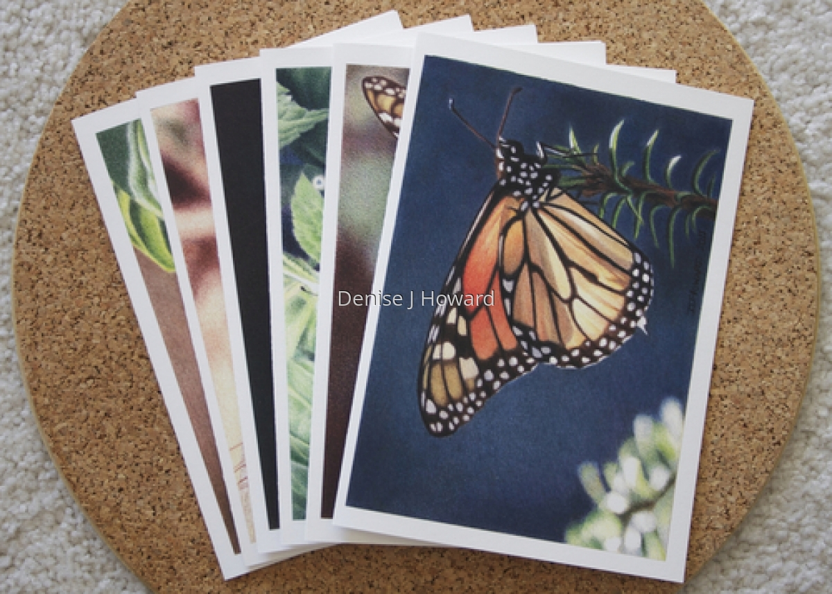 Monarch note card variety pack (large view)
