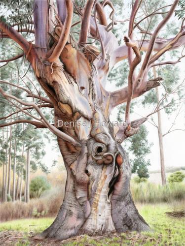 Tree of Renewal