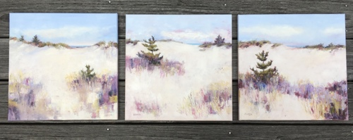 Three Cape Cod Dunes