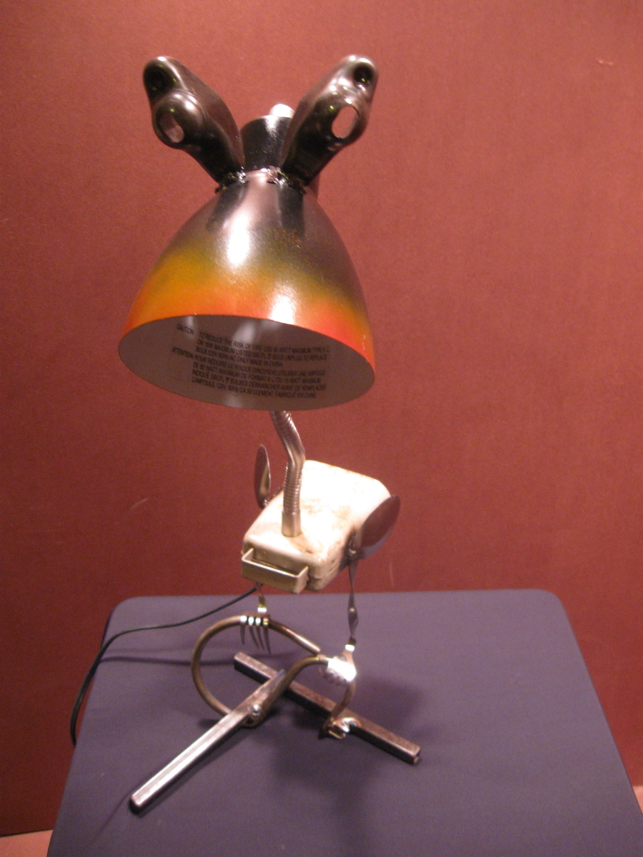 orange rimmed lamp bird (large view)