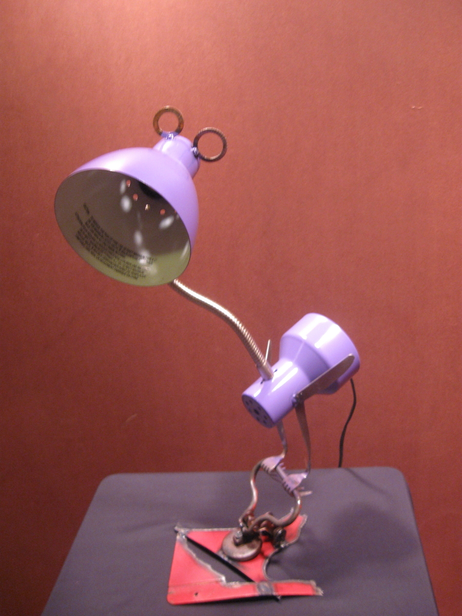 purple lamp bird (large view)