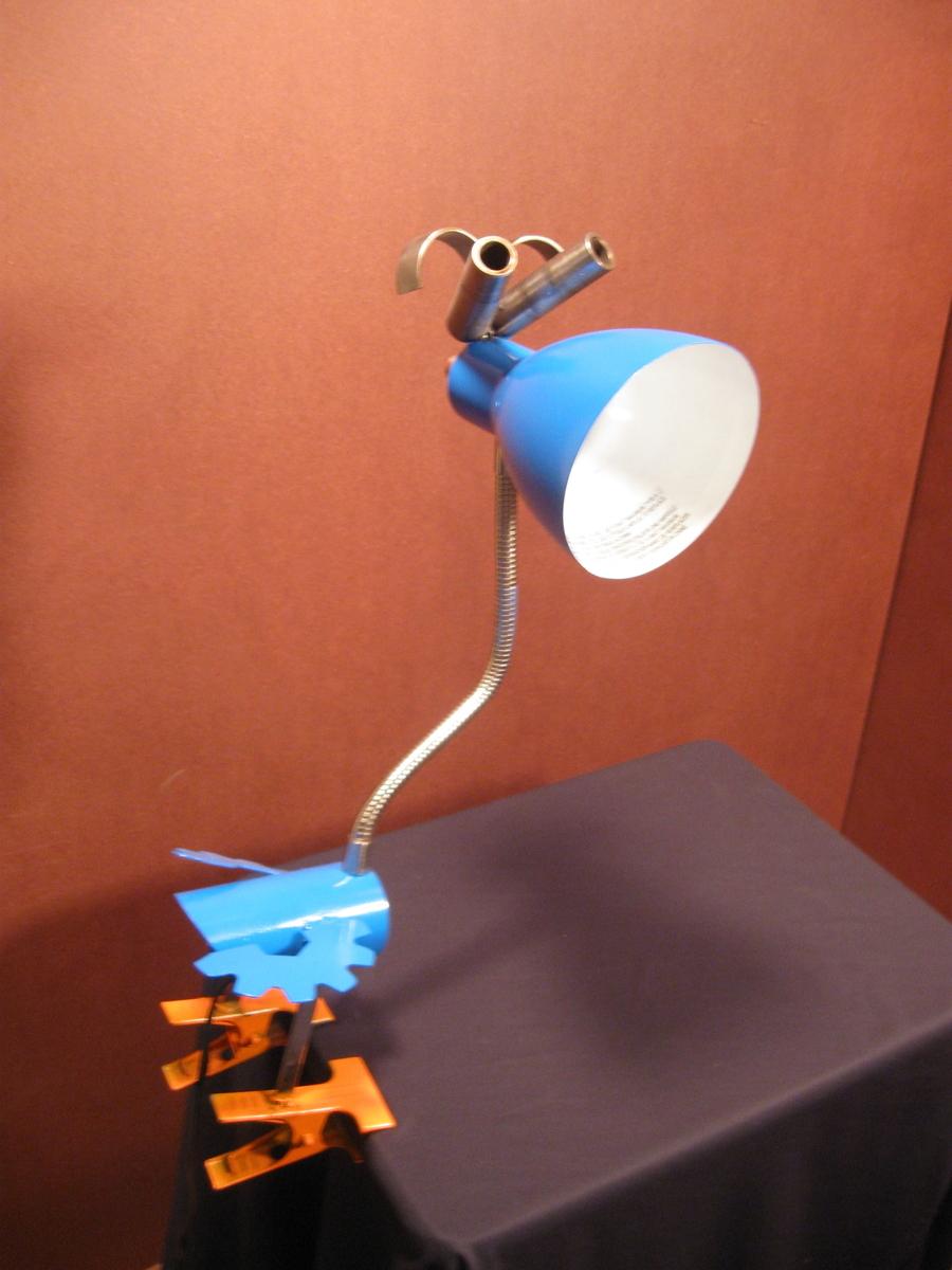 orange feeted lamp bird (large view)
