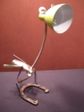 yellow lamp bird (thumbnail)