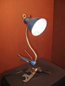 big blue lamp bird (thumbnail)