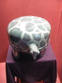 turtle (thumbnail)