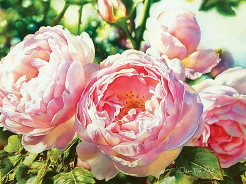Pretty in Pink by Debbie Friis-Pettitt Watercolors
