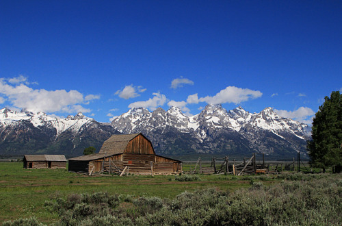 Mormon Row, Jackson Hole, Wyoming by Dan Geldert Fine Art Photography