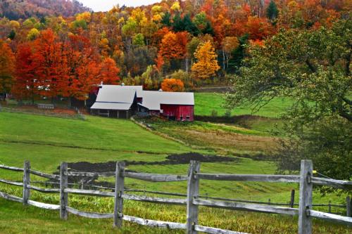 Jenny Farm, Vermont (one)