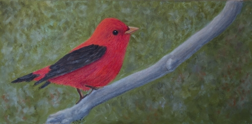 Scarlet Tanager by Give the gift of original art!