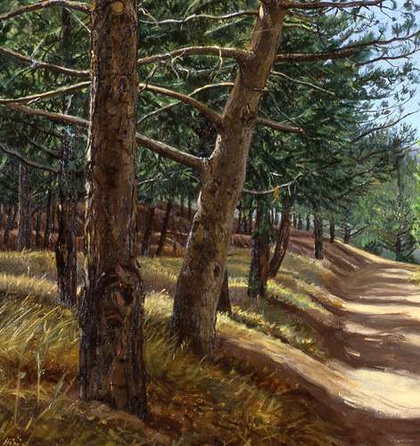 """Plein Air study for painting """"Forest Service Road"""" (large view)"""