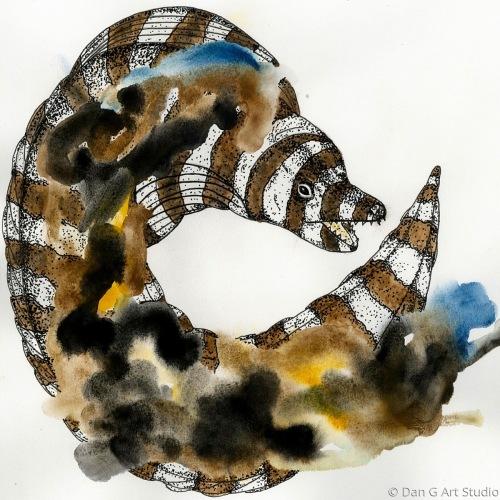 Zebra Puhi
