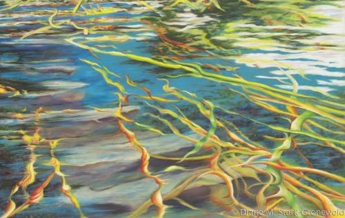 Uncertain Waters