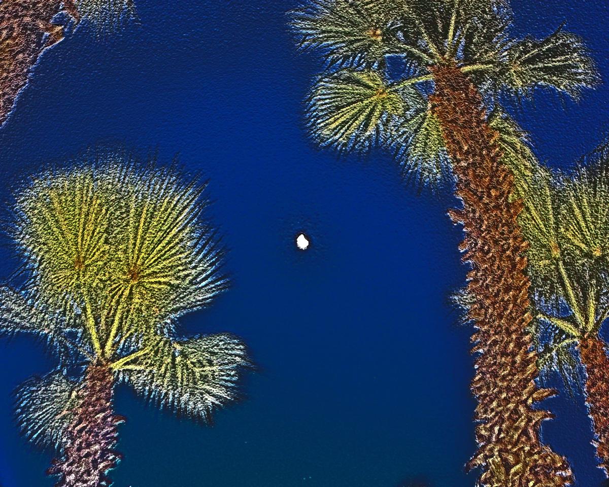 Carolina Moon (large view)