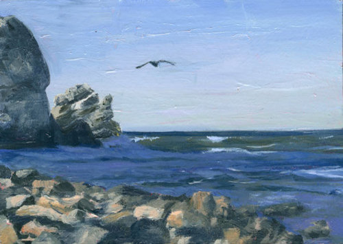 Bird Rock (large view)
