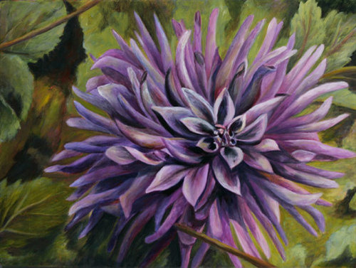 Dahlia in Lavender (large view)