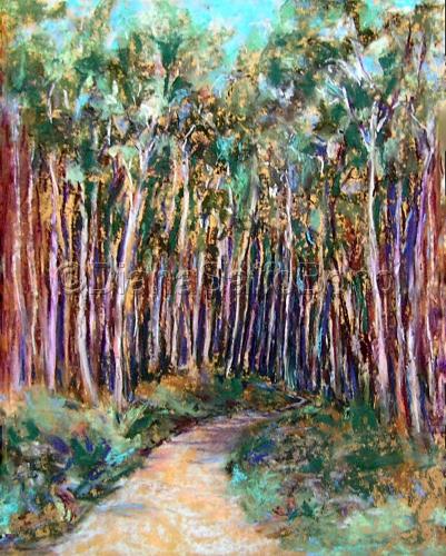 Aspen Forest by Diana Saffo Bono