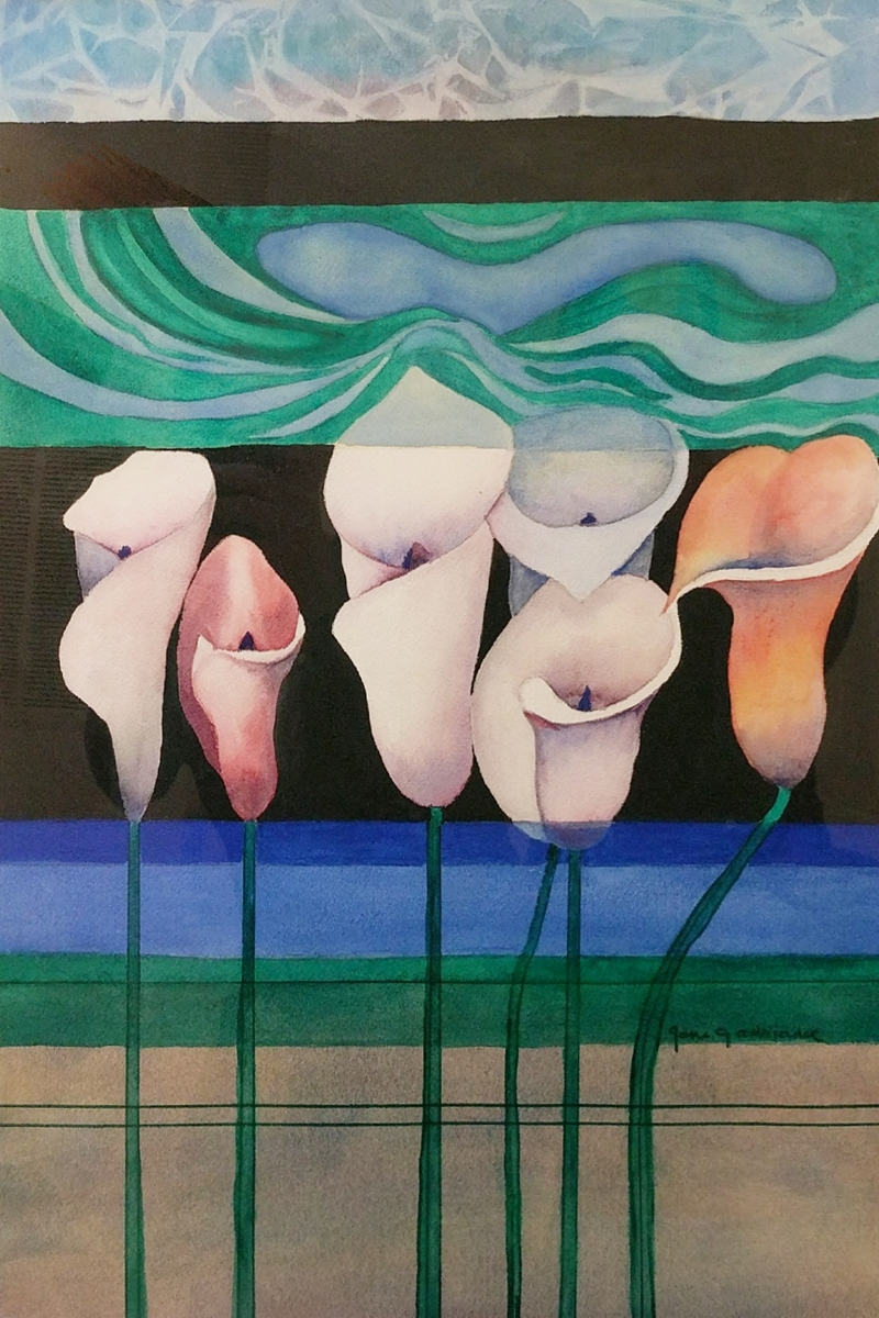 Calla Lillies (large view)