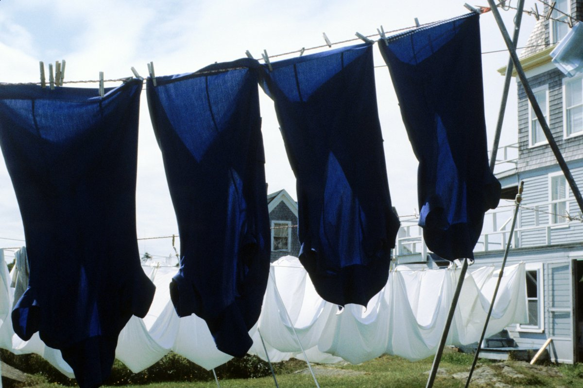 Clothesline #008 (large view)