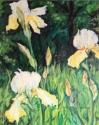 Wild Irises (thumbnail)